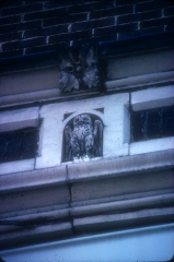 Terra cotta owl from cornice entablature.